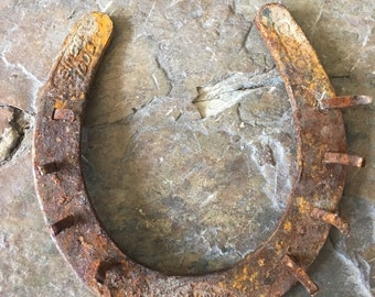Authentic Horse Shoe, Luck, Prosperity, Coat Hook