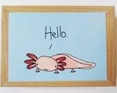 Hello Axolotl