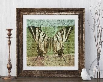 vintage Butterfly print | Vintage butterfly art | butterfly wall art | butterfly decor | vintage style | insect art | butterfly wings