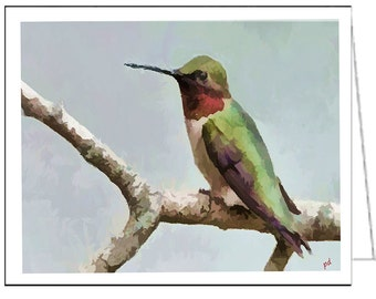 Humming Bird 'Cheeky'- Set of 6 Blank Notecards and Envelopes By Doggylips