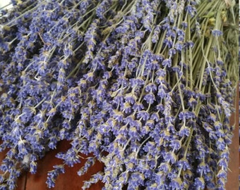 8 Deep Blue Dried Lavender Buds Bouquets