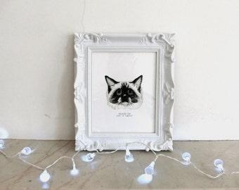 Rag doll Cat Print