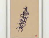 Number 135 Hedgerow Flower