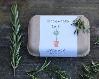Herb hostess gift Rosemary seeds garden kit eco friendly gift clam shell box dried rosemary wreath rosemary plants gift for men gift for her