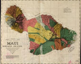 Maui, Hawaiian islands, 1885, 1800's, 1800's,  Photo Print