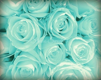 "Rose Photograph, Rose Art, Aqua Flower Photo, Cottage Chic Garden Photograph, Romantic Aqua Blue Art, Modern Botanical Print- ""Aqua Dream"""