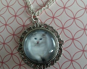 Cat Necklace.