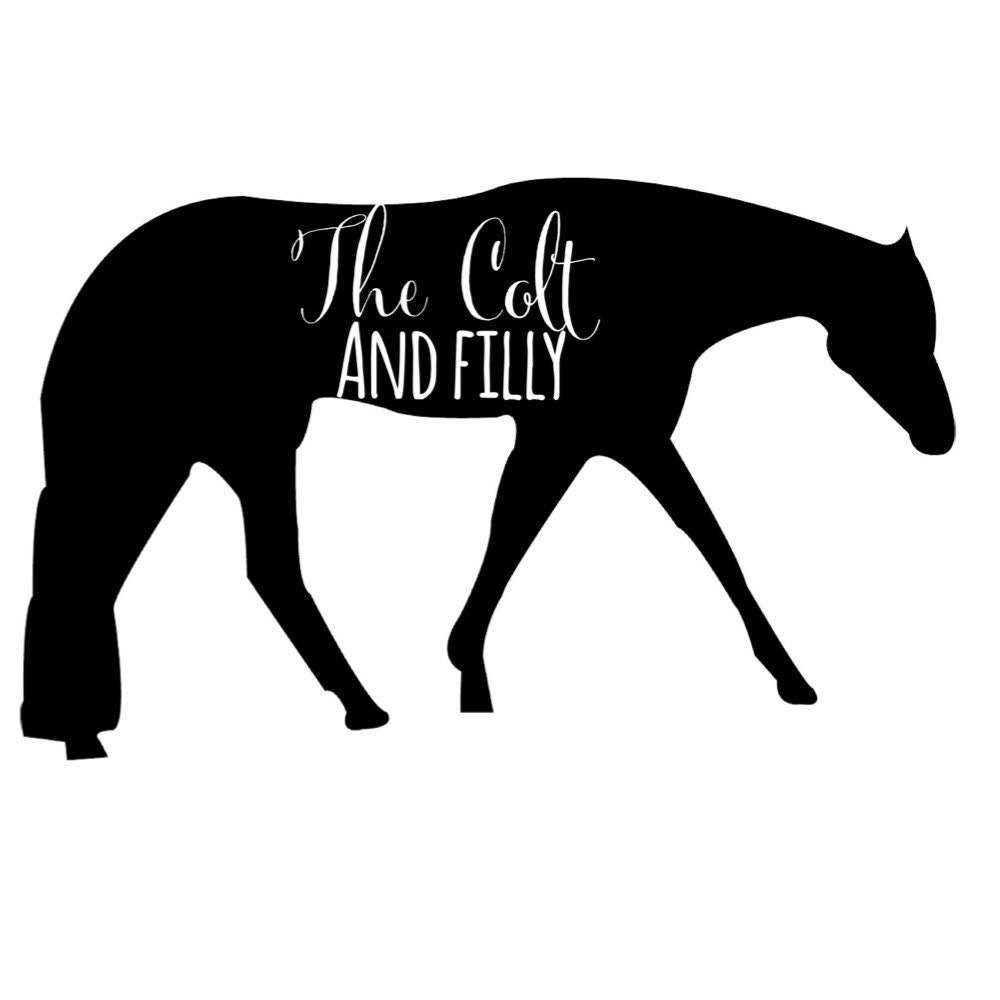thecoltandfilly