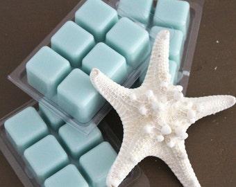 Seaside wax melts, soy wax melts, paraffin wax melts, ocean wax melts, beach scented, clamshell wax melt, breakaway wax
