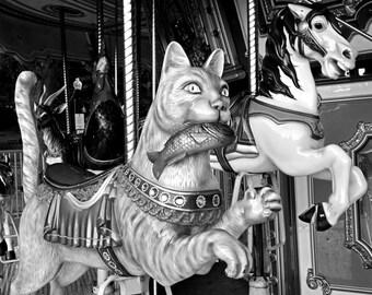 Boston Common Merry-Go-Round Cat, Carousel,  cat photography, cat art, cat print, cat decor, merry go round, carnival