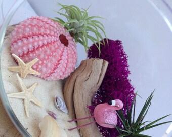 Flamingo Terrarium, DIY Terrarium, Airplant Terrarium, Beach Terrarium, Beach Lovers Gift, Unique Gift, Home Decor