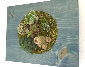 CUSTOM COLOR: Circle Succulent + Cacti Vertical Garden | Vertical Planter | Living Wall | Wall Planter | Hanging Planter | Wood Plant