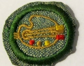 "Vintage Intermediate Girl Scout Badge ""Drawing and Painting"" circa 1940's"