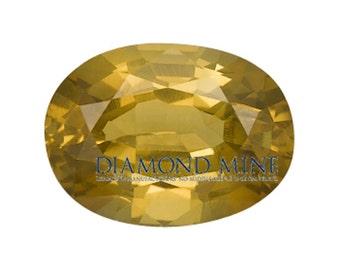 1.74 Carat Yellow Sapphire, Oval cut Sapphire, Loose Sapphire Gemstone, Yellow Gemstone, Non Heated Real Sapphire
