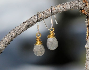 Brass Wire Wrapped Faceted Labradorite Drop Earrings