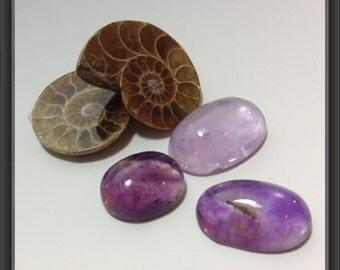 Cabochons mix/ free ammonite