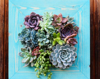 Vertical planter Succulent garden! Made to order