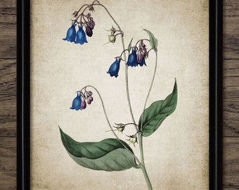 Blue Flowers Print - Flower Illustration - Botanical Flower Art - Digital Art - Printable Art - Single Print #145 - INSTANT DOWNLOAD