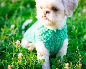 Handknit Cat & Dog Sweater Mock Cable Pattern in Superwash Merino, Colorway Campbell - CUSTOM