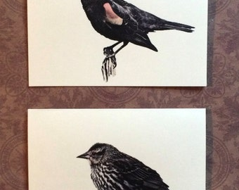 Set of 6 or 12 Handmade Blank Red Winged Blackbird Print Note Cards