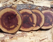 Set of Four or Eight Red Cedar Coasters.  Slices of New Mexico Red Cedar with Beautiful Knots and End Grain.