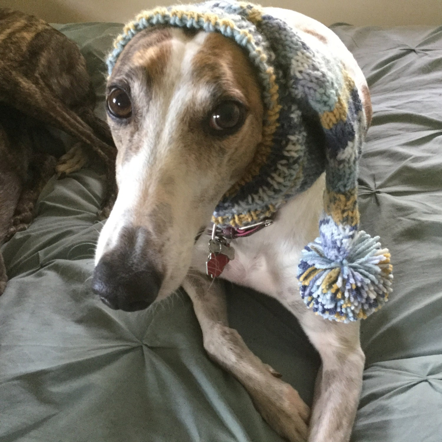 Pointed hat with snood for greyhound fair isle pattern china blue bankloansurffo Images