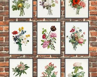 Set of 9 Prints Antique Botanical Flowers Art Prints, Get 3 Colors Background, Botanical Home Decor, Antique Flowers Book Illustration *2*