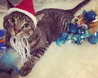 Santa Cat Hat