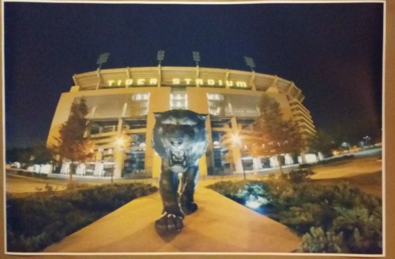 Man Cave Haircut Bar Baton Rouge : Lsu tigers full size poster print