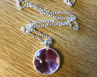 Pressed Pressed Flower Necklace in Maroon