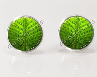 Green leaf earrings, post earrrings, stud earrings, nature jewelry, glass earrings, picture earrings