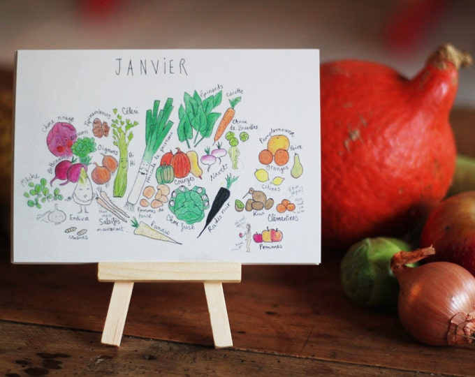 The fruits and vegetables calendar & his little easel - set of 12 postcards comic hand.