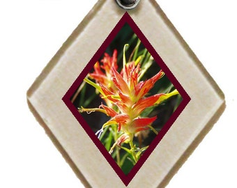 "Pendant ""Indian Paintbrush"" rescued window glass"