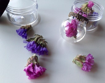 Dried flowers Staticen for hollow beads glass globes (A 983)