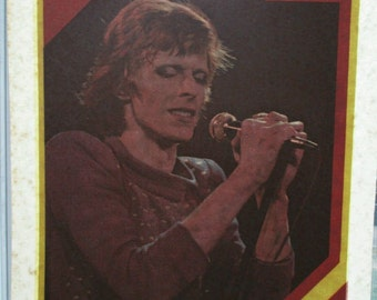 Decal David Bowie In Concert Vintage T-shirt Iron-on Original 1970s Retro RARE!!