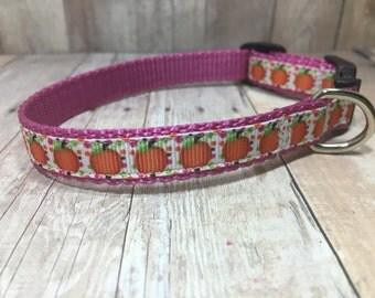"The Harvest III | Designer 1/2"" Width Dog Collar | CupcakePups Collars | Halloween | Girly Pumpkins - Small Dog Collar"