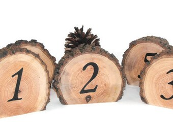 10 Table numbers ~ Woodland Table numbers ~ Rustic Wedding table numbers ~ Party Table Numbers