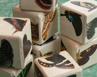 Butterfly & Moth Matching Wood Blocks