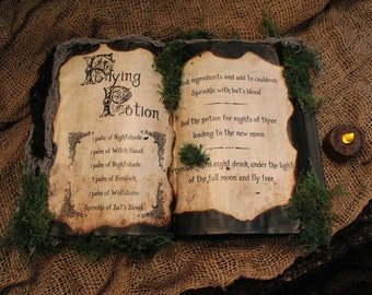 """Halloween Spell Book, """"Flying Potion"""", Halloween Decoration, Halloween Prop, Spells, Halloween Prop, Haunted House, Witch, Potions"""