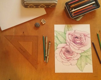 Original, hand-drawn in colored pencil- Pink Roses