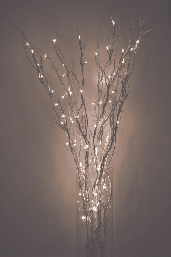 Led Lighted Curly Willow Branches Silver Gold By