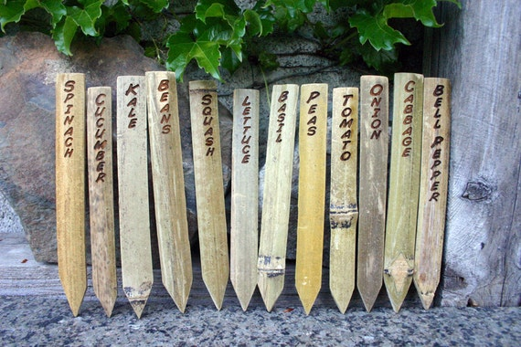 6 Bamboo Garden Stakes are Laser engraved to Label or Mark