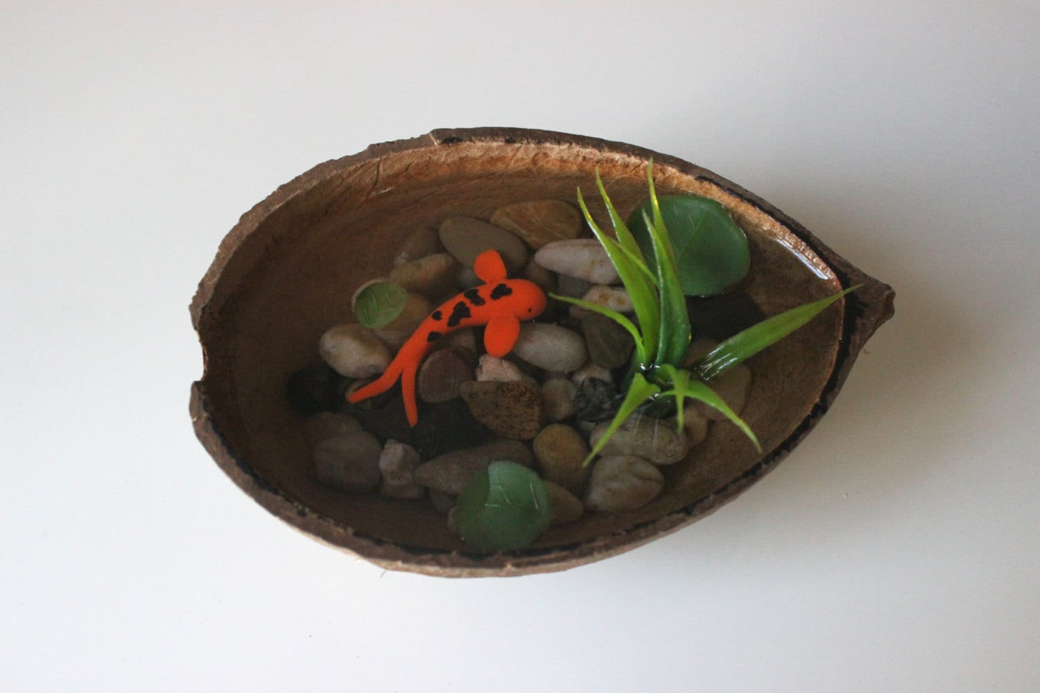 Miniature koi pond in coconut fake koi pond polymer clay koi for Artificial fish pond