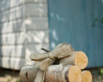 Silver Birch Decorative Logs
