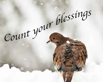 Count your blessings blank card