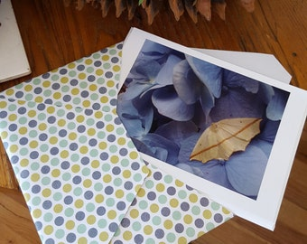 Hydrangea Note Cards, set of four cards