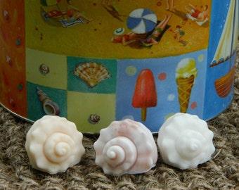 Sea Shells Soap Bars