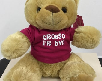 Bear in a T-Shirt - Welsh Language - Croeso i'r byd