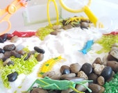 Outdoor Explorer Sensory Box Kit: Sensory Bin Activity with Bugs & Insects, Play for Toddlers, Discovery Learning Kit, Sensory Play Lesson