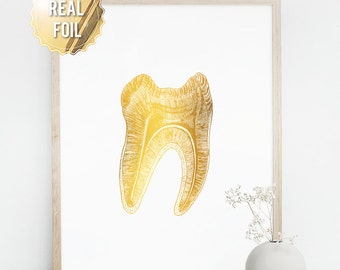 Dentist Gift - Gifts for Dentist - Gold Foil Print Tooth - Dentist Art - Dentist Graduation Gift - Dentistry Office Wall Art - Medical Art